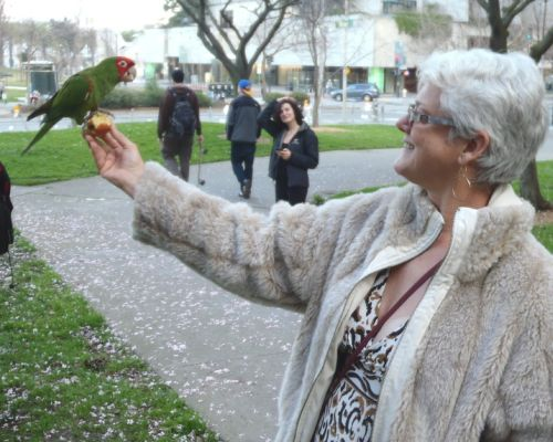 Janet Gray with a parrot in San Francisco, CA.