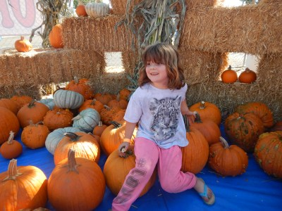 Minnie in a pumpkin patch
